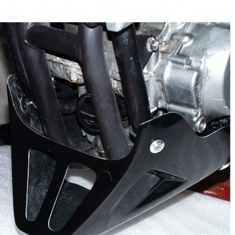 Kawasaki ER-5 - Standard Belly Pan